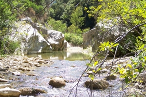 Up the Sosio river in wild nature. Things to do in San Carlo